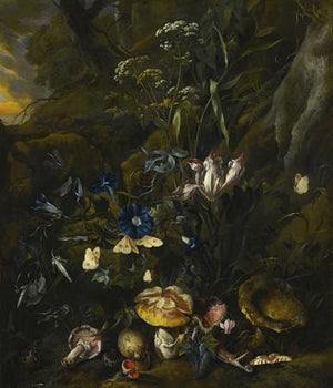 Dark Forest Floor. Antique Dutch Painting by Otto Marseus van Schrieck. Fine Art Print