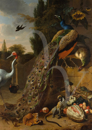 Peacocks and birds in a Classical garden. Antique painting-Fine art print