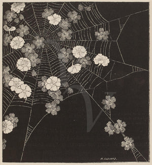 Spider Web with Flowers. Antique artwork.Gothic nature. Fine art print