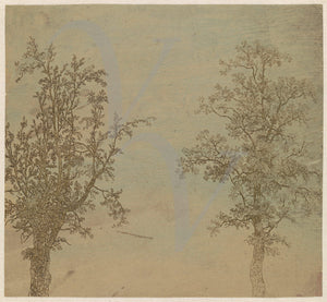 Two Trees. Antique Etching. Fine Art Print