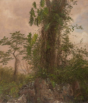 Tropical Forest Trees Antique Painting. Fine Art Print