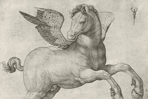Italian engraving of Pegasus. Fine art print