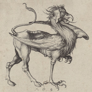 Griffin from a Medieval German engraving. Fine art print