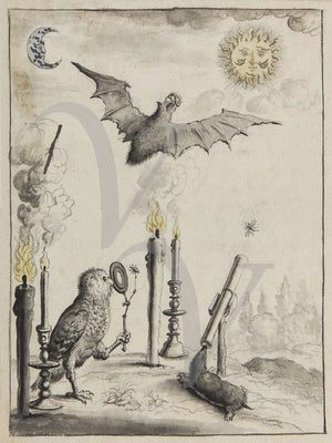 Owl, bat and Mole. Magical alchemy illustration. Occult art print