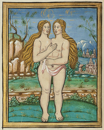 Two-headed woman painting from Histoires Prodigieuses by Pierre Boaistuau. Fine art print