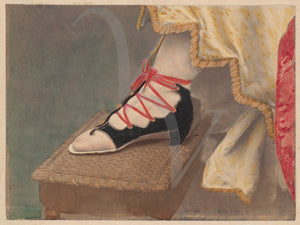 Victorian Shoe. Antique photograph. Fine Art Print