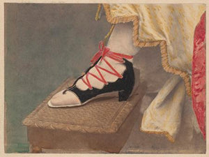 Victorian Shoe - Venus Art Prints