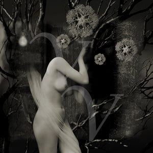 Sleep Spaces. Surreal Gothic ghost woman collage. Fine art print