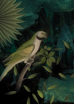 Night Parrot. Green bird collage. Fine art print