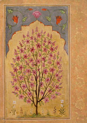 Antique Indian painting of a flowering tree. India. Fine art print