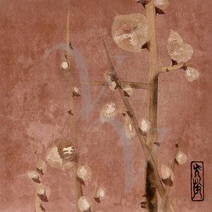 Japanese plum blossoms fine art print
