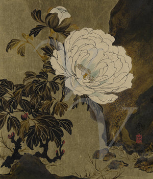 Peonies. Japanese lacquer painting. Fine art print