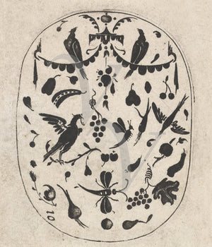 Birds and Insects. Antique Decorative Nature Engraving. Fine Art Print