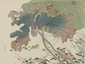 Japanese nature woodblock print. Insects and leaves. Fine art print