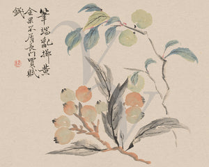 Loquat Tree Branches and Fruit. Japanese Edo period watercolor. Fine art print