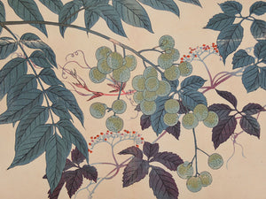 Berries and Leaves. Antique Japanese woodblock. Fine art print