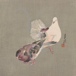 Two Doves. Vintage Japanese artwork. Fine art print