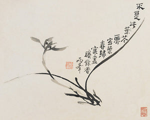 Calligraphy Orchid. Antique Chinese flower design. Fine Art Print