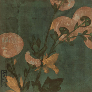 Chrysanthemums. Antique Japanese flower painting. Fine art print