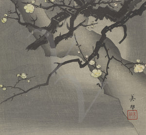 Flowering moonlit cherry tree. Japanese woodblock. Fine art print