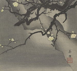 Japanese Cherry Blossoms in Moonlight. Fine Art Print