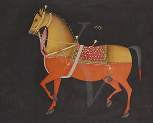 Mughal Isabelle Stallion. Indian horse painting. Fine art print