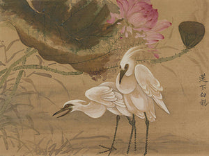 Egrets and Lotus. Antique Chinese painting. Fine art print
