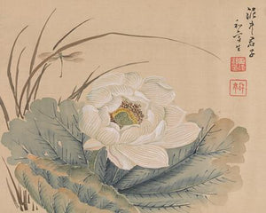 Japanese silk painting of a lotus flower. Fine art print