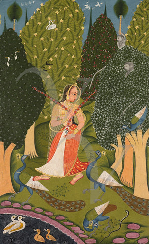Indian Ragamala Painting.Woman with Peackcocks. Fine Art Print