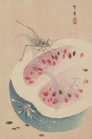 Insect and Watermelon by Watanabe Seitei. Vintage Japanese painting. Fine art print