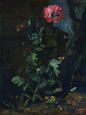 Night Garden. Antique dark garden painting. Fine art print
