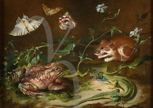 Frog, mouse and moths. Antique painting. Fine art print