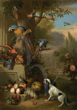 Parrots and Dog in an Opulent Garden - Venus Art Prints