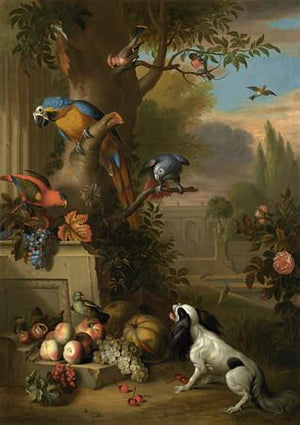 Parrots and Dog in an Opulent Garden. Antique painting. Fine Art Print
