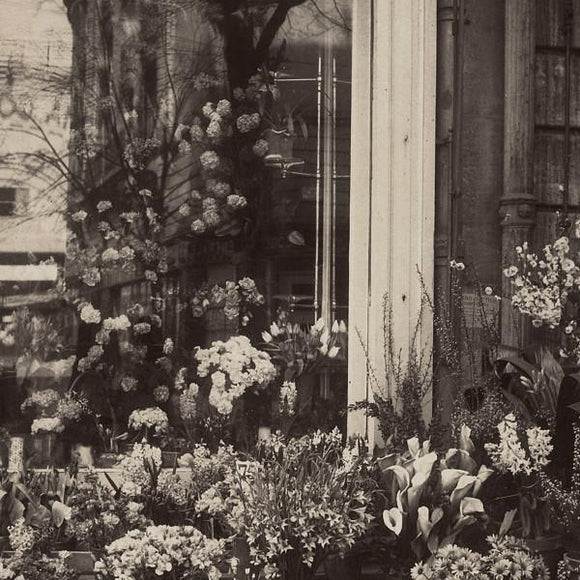 French Flower Shop - Venus Art Prints
