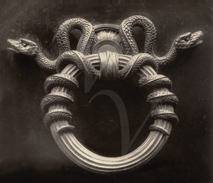 Antique Gothic snake door. Vintage photography. Fine Art Print