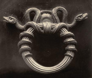 Snake Decoration. Antique Door Knocker photograph. Fine Art print