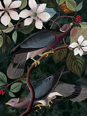 Fruits of the Forest - Venus Art PrintsFruits of the Forest. Rain forest birds. Dark floral original collage. Fine art print