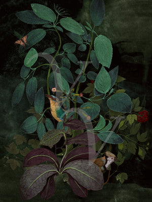 Verdant Retreat. Rain forest birds collage. Fine art print