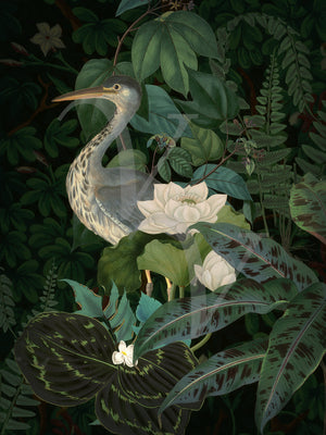 Evening Jade original collage. Lush rain forest with tropical flowers and bird. Fine art print.
