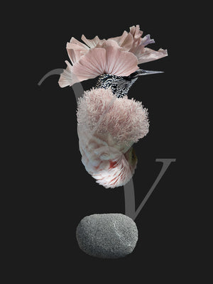 Earth Song. Flower bird collage. Surreal nature. Fine art print