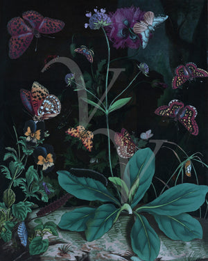 Dream of Spring. Butterfly Garden Collage. Fine Art Print