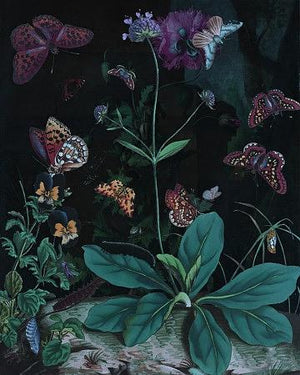 Dream of Spring. Dark night garden with butterflies. Original collage. Fine art print