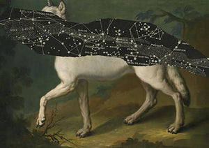 West with the Night. Wolf and stars. Celestial white wolf. Wolves. Dream art. Fine art print