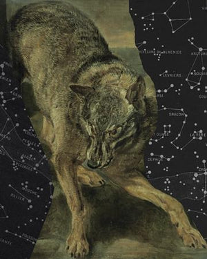Wolf and stars collage. Celestial animal wall art. Fine art print