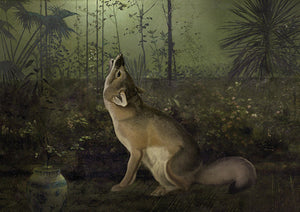 Fox in Moonlight. Fine Art Print