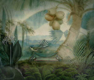 Beautiful Day. Exotic Jungle Garden Bird. Fine Art Print