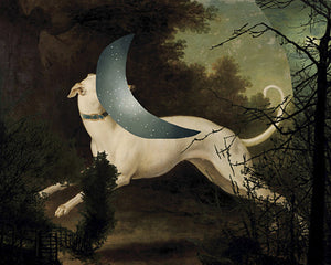 Running with the Moon. Dog in Night Forest collage. Fine art print