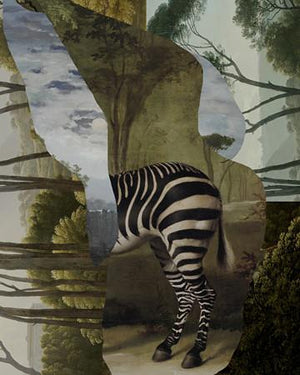 Wild Life. Abstract zebra forest collage. Fine art print
