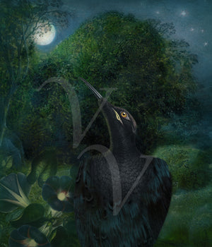 Black bird with Full Moon. Mystical raven collage. Fine art print